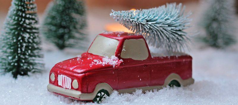 Weihnachtsbaumverkauf 2020 abgesagt