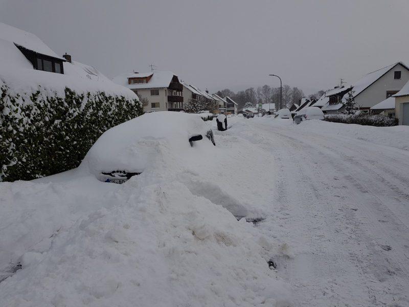 Lippo Winter – Ein Dankeschön